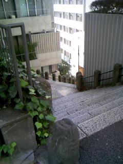 坂道コロコロ